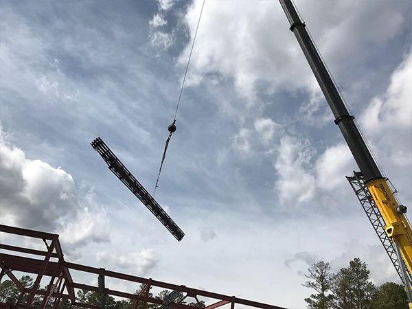 Crane Over Me